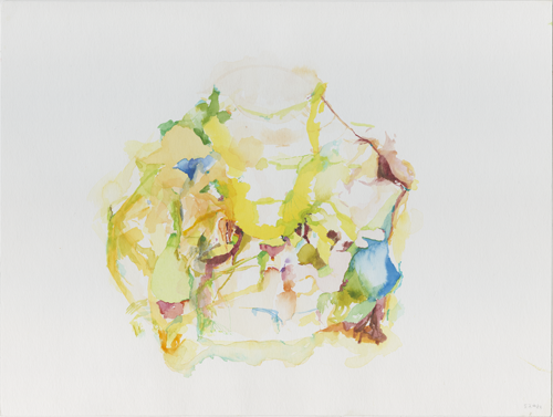 Kirsten Kötter: Site-specific research Nordpark Frankfurt am Main, 05.07.2004, water colour 30 x 40 cm