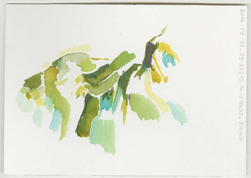 2016-08-19_39-50279_16-811650_ziegen, in the country between Pietrapaola Marina and Pietrapaola Paese (Italy, Calabria), water colour, 12 x 17 cm (Kirsten Kötter)